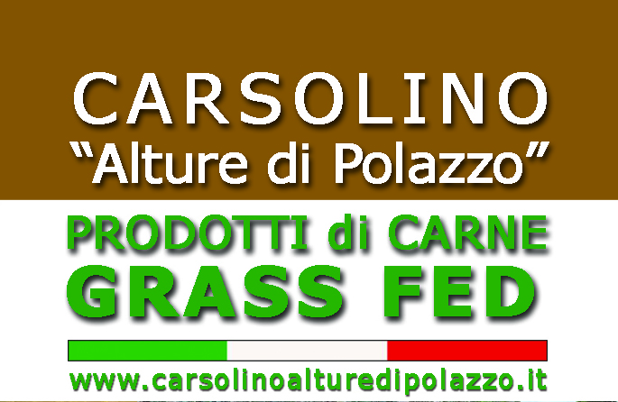 logo_carsolino_01
