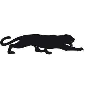 New Black Panthers - Ronchi Baseball